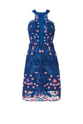 c08ca372 Blue Bird Lace Dress by Marchesa Notte