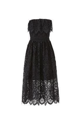 Eleanora Lace Dress by Shoshanna