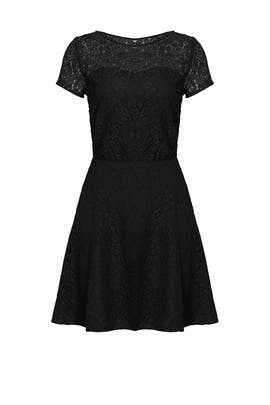 Black Lace Jolene Dress by Slate & Willow