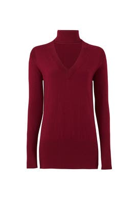 Black Cherry Turtleneck by Tome