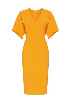 Orange Bat Sleeve Dress by Donna Morgan
