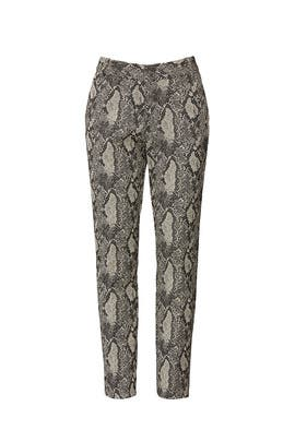 Snake Print Pants by RACHEL ROY COLLECTION