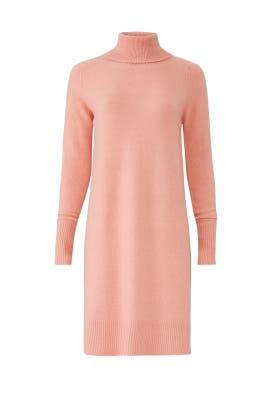 Pink Turtleneck Dress by J.Crew