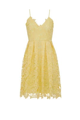 Yellow Floral Lace Dress by Slate & Willow