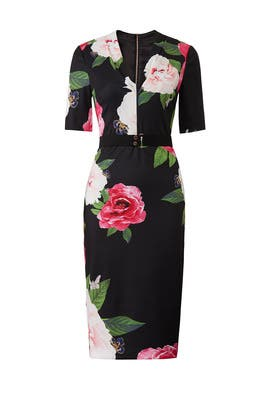 745cb6e650de Gilanno Dress by Ted Baker London for  55