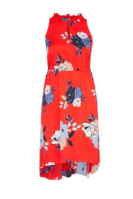 Concetta High Low Dress by Rachel Rachel Roy