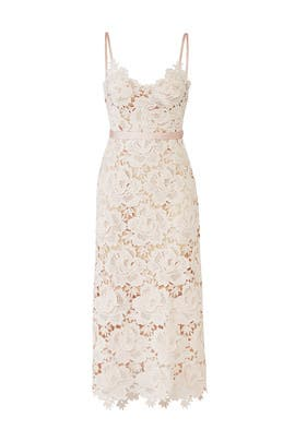 9df13f9a177 CATHERINE DEANE Rose Lace Frida Dress