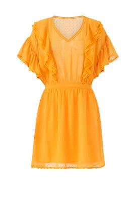 Yellow Ruffle Lace Dress by Scotch & Soda
