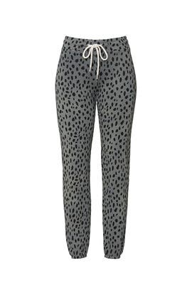 Cheetah Print Sweatpants by MONROW