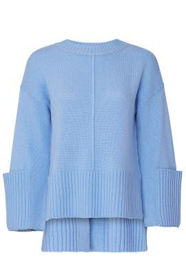 Lynx Sweater by Charli