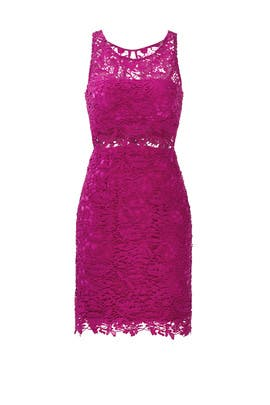Mulberry Lace Sheath Dress by ML Monique Lhuillier
