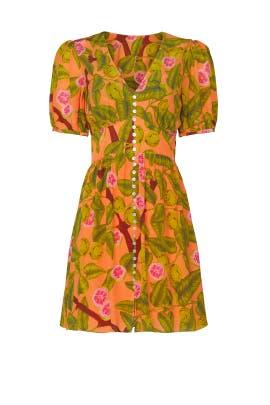 Guava Mini Dress by FARM Rio