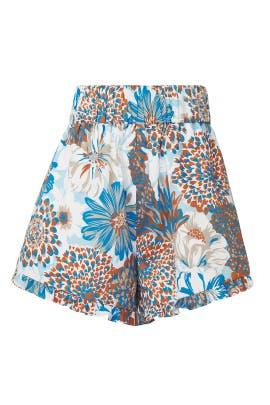 Serenity Mini Shorts by AMUR