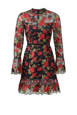 Rose Allison Dress by Saylor