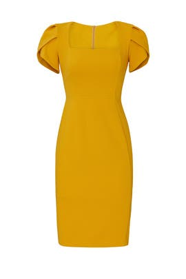 Short Sleeve Marigold Dress by Donna Morgan