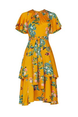 Marigold Tiered Dress by Great Jones