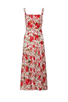 Amal Dress by Alexis