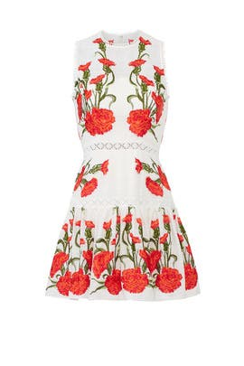 Blossom Sabella Dress by Alexis