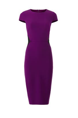Purple Contrast Sheath by Donna Morgan