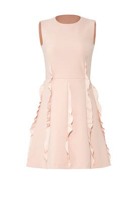 Pink Ruffle Skirt Dress by RED Valentino
