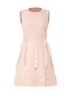 Pink Ruffle Skirt Dress by RED Valentino