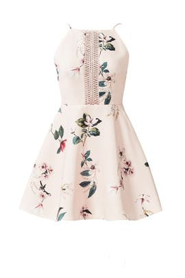 Pink Do It Right Dress by Keepsake