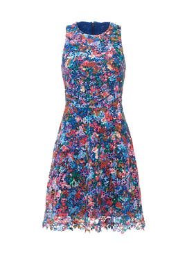 0cb0ab72fd Confetti Flower Lace Dress by Nicole Miller for  60 -  83