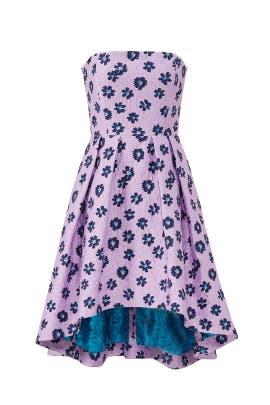 Novara Dress by Shoshanna