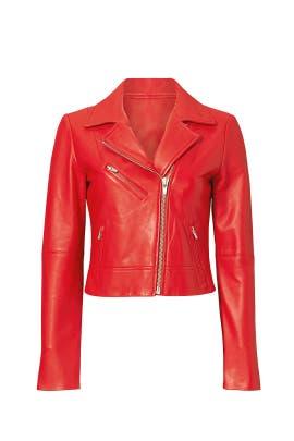 Blood Orange Nova Jacket by VEDA