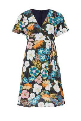 Midnight Combo Wrap Dress by Rachel Rachel Roy