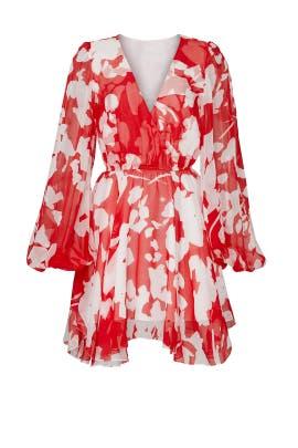 Olena Dress by CAROLINE CONSTAS