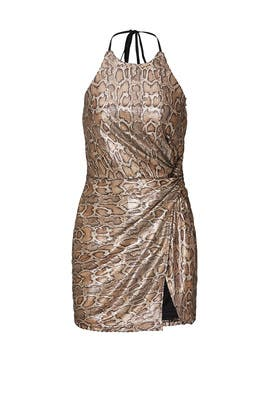 Snake Print Mini Dress by J.O.A.