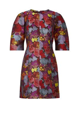 Jacquard Shift Dress by Peter Som Collective