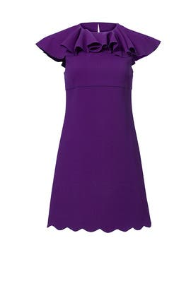 Purple Scallop Top Mini Dress by Giambattista Valli