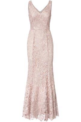 Lace Colection Dresses JS