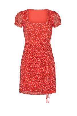 Red Floral Mesh Sheath by Louna