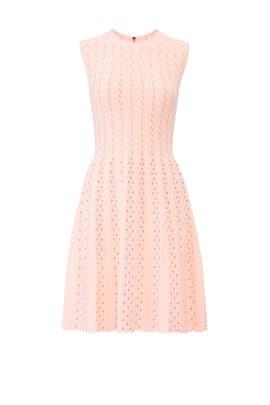 Vellia Dress by Ted Baker London