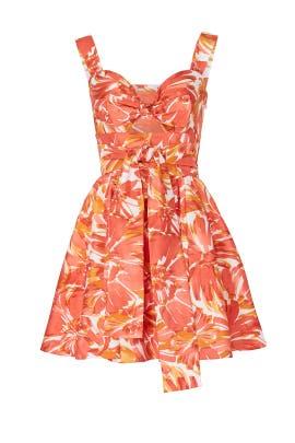 Ilda Dress by Alexis
