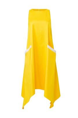 Yellow Trapeze Dress by Badgley Mischka