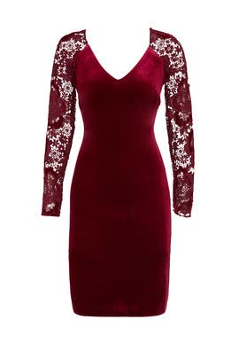 Red Velvet Lace Sheath by Badgley Mischka