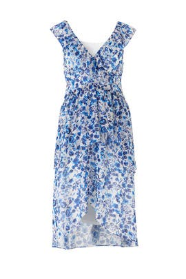 Blue Floral Ruffle Dress by Rachel Rachel Roy