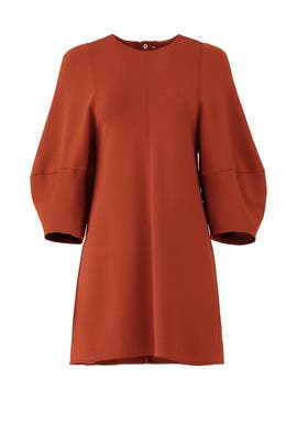 Rust Balloon Sleeve Dress by Tibi