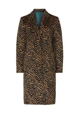 Zebra Coat by NVLT