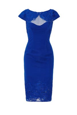 Cobalt Lace Cap Sleeve Sheath by ML Monique Lhuillier