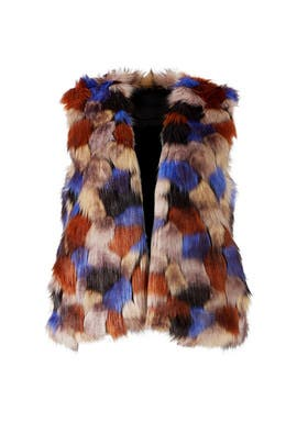 Multi Faux Fur Vest by Waverly Grey