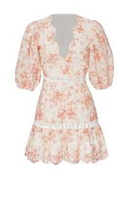 Taya Dress by Saylor