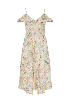 Floral Ruffle Chiffon Midi Dress by Rachel Rachel Roy