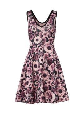 Nadine Dress by ERIN erin fetherston