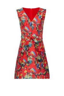 Alannah Mini Dress by Hutch