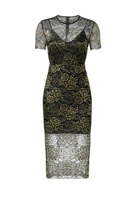 Gold Lace Sheath by Diane von Furstenberg